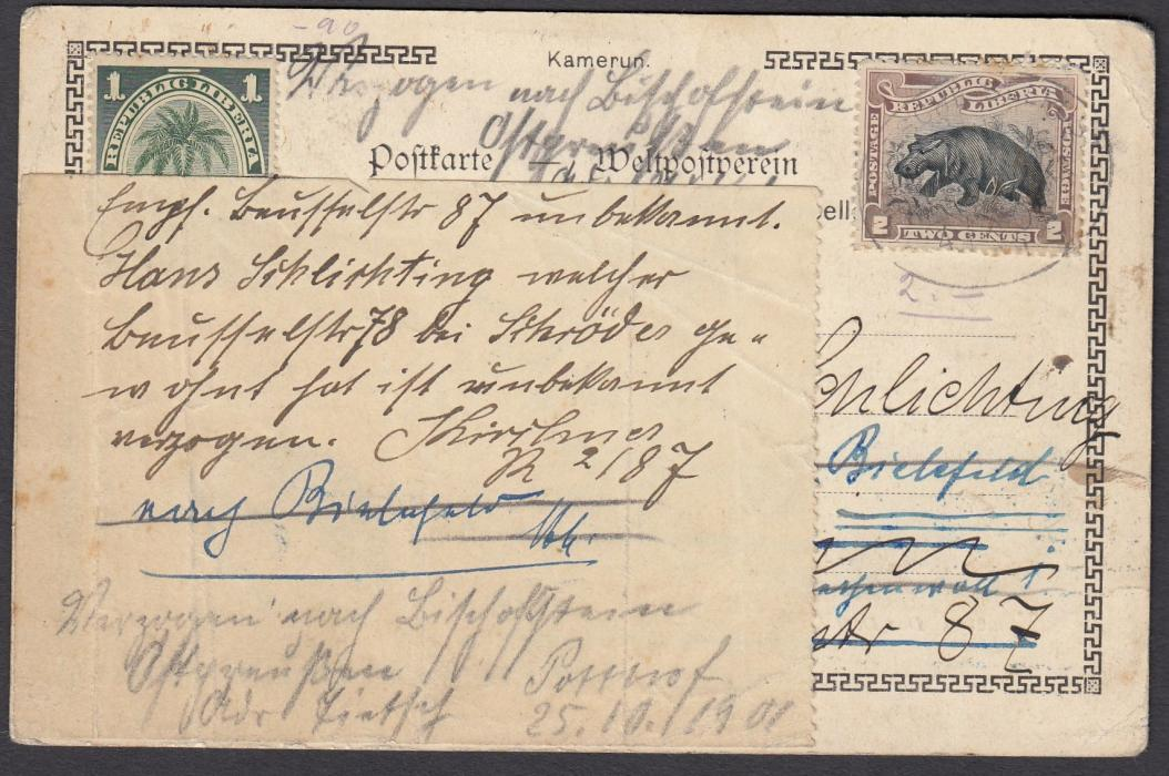 LIBERIA 1901 picture post card of Kamerun to Germany franked 1c. & 2c. tied oval DEUTSCHE SEEPOST/LINIE/HAMBURG/WESAFRIKA/XXI date stamp. Much re-directed on arrival in Germany with extra piece of paper affixed to card to allow for this; some slight damage to front of card.