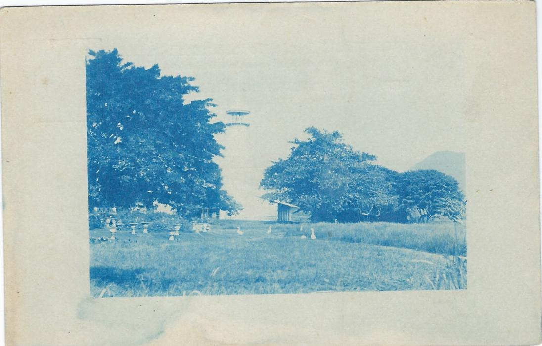 Netherland Indies (Picture  Stationery) c.1890 7½c. postal stationery card with blue image of Geese in garden (the building no longer visible at centre); fresh unused.