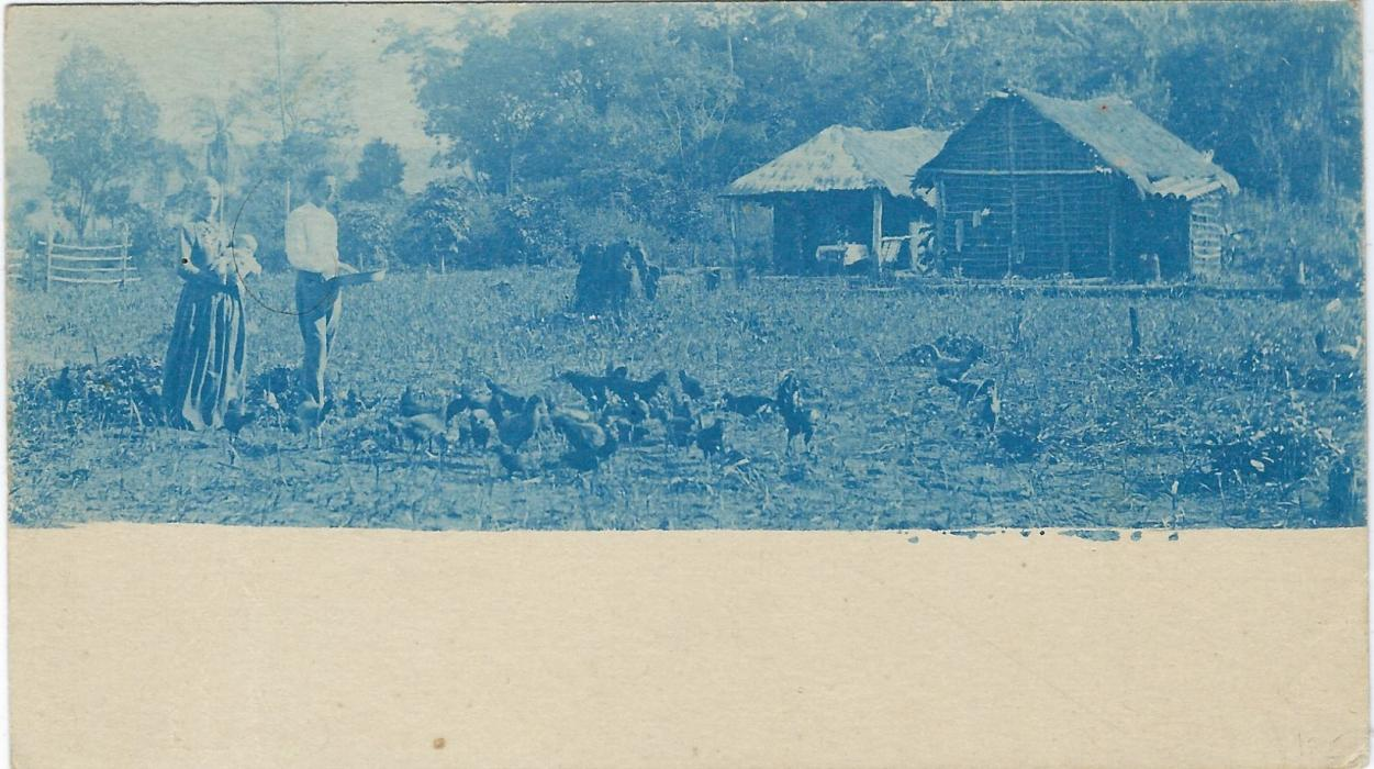 Paraguay (Picture  Stationery) Late 1890s  4c. card with on front fine blue image of couple feeding Chickens; fresh unused.