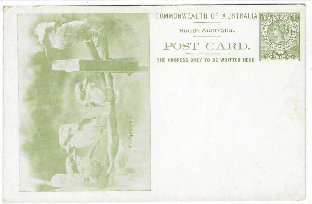 Australian States (South – Picture Stationery)  1900s 1d. olive-green stationery card with illustration of four Kookaburra; some slight toning on reverse and at edges.