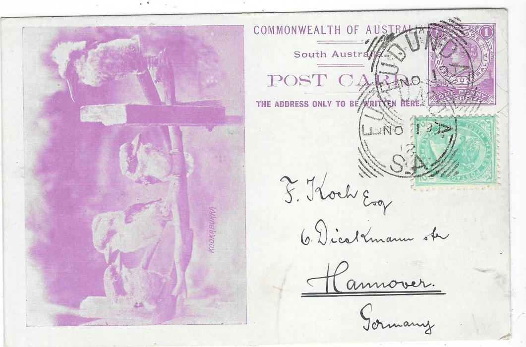 Australia (South - Picture Stationery) 1912 1d. lilac picture postal stationery card titled 'Kookaburra' with a group of four birds, to Hannover and uprated with New South Wales ½d. tied by two Fudunda S.A. square circle date stamps.